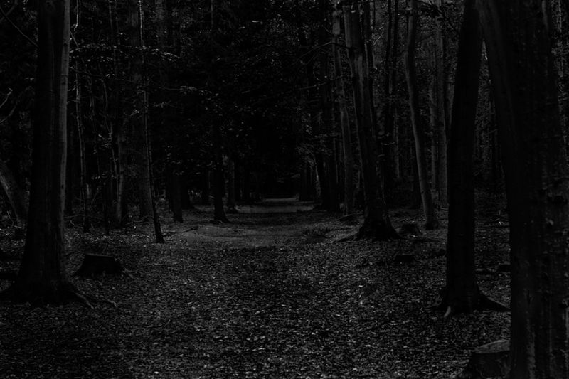 Dark-path