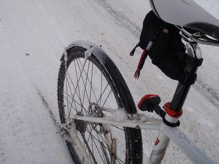 Winter 01-090-2011 (2)