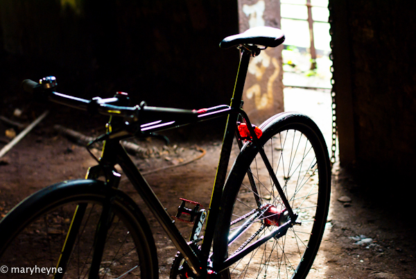 Evil Earl into the dark 105
